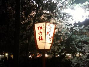 Sakura20110406_2